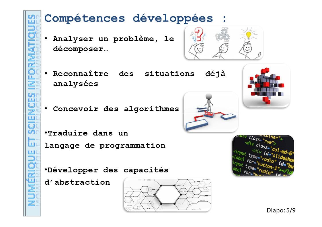 Diapositive5 13