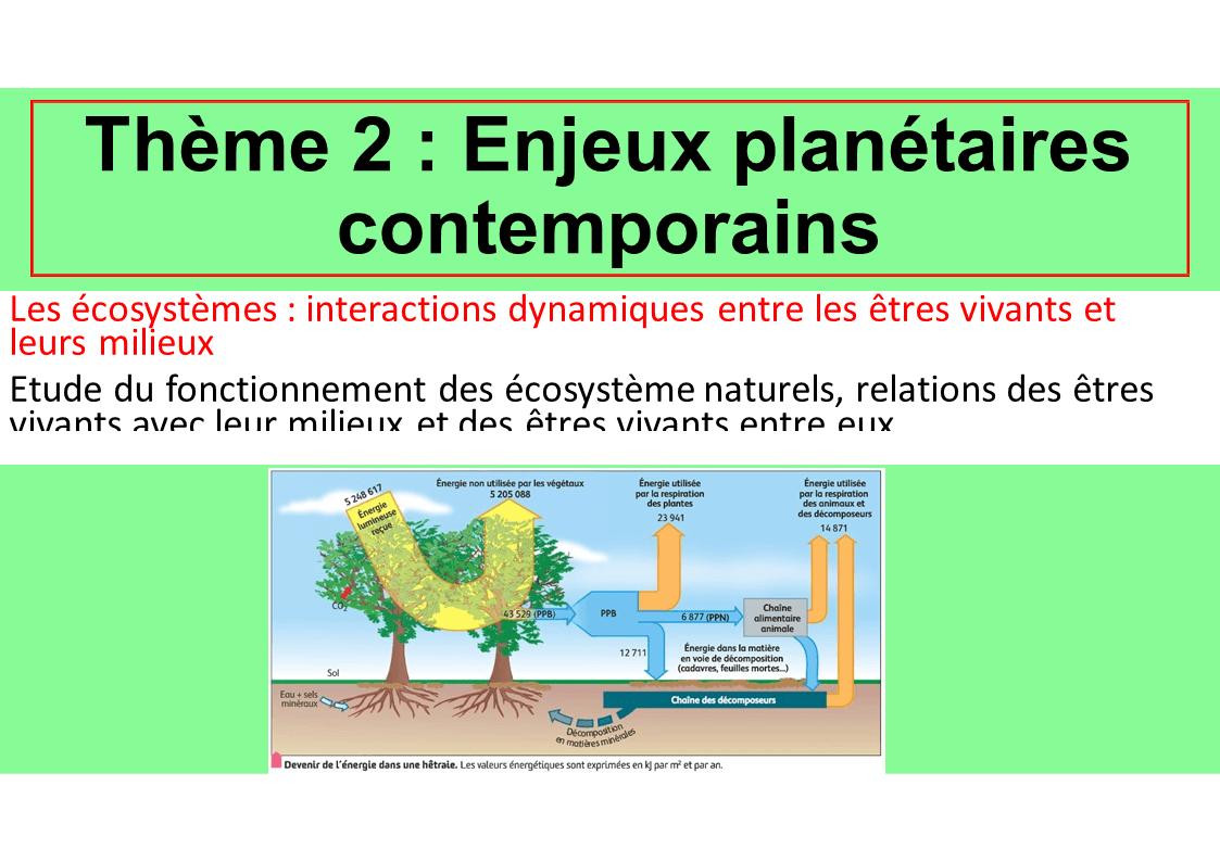 Diapositive6 12