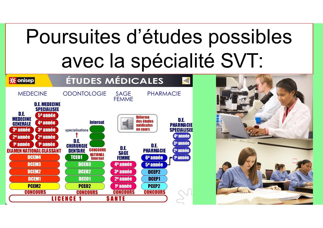Diapositive9 11