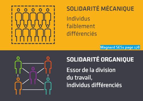Solidarite mecanique et organique